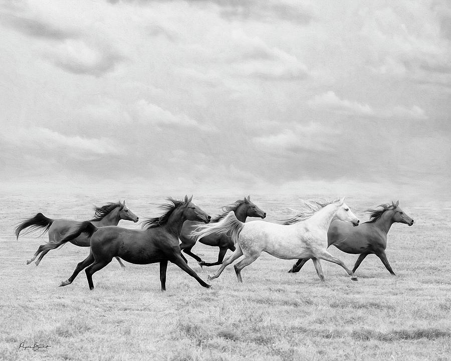 Run Away by Phyllis Burchett