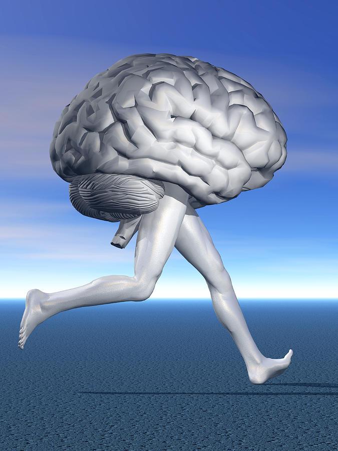 мозг который пуст картинки