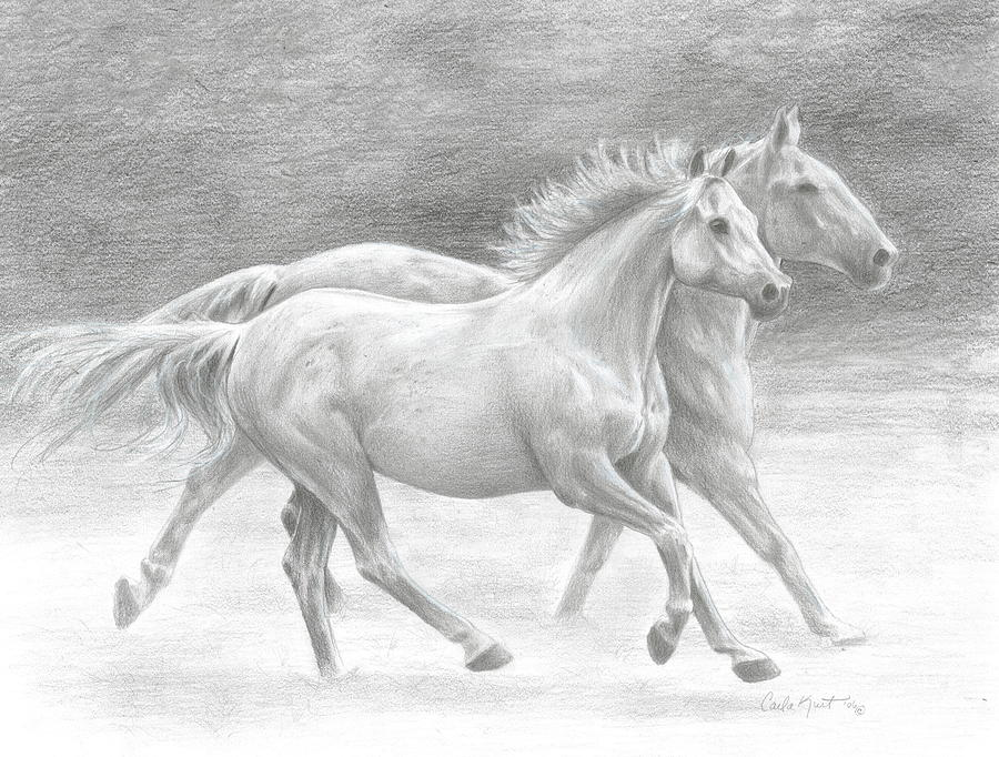 Horses Drawing - Running Free by Carla Kurt