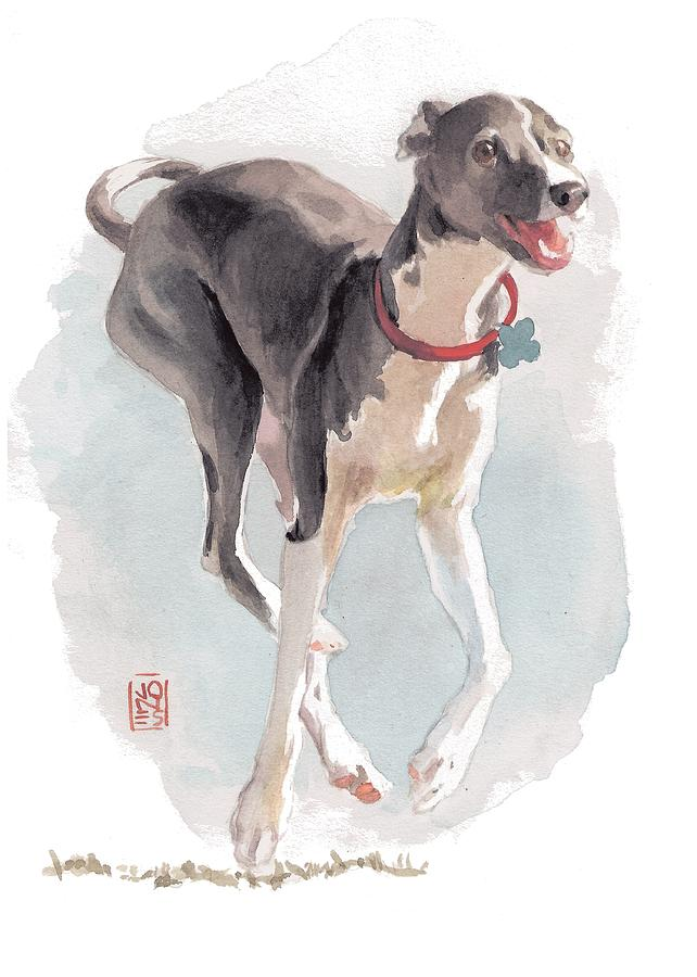 Italian Greyhound Painting - Running Italian by Debra Jones