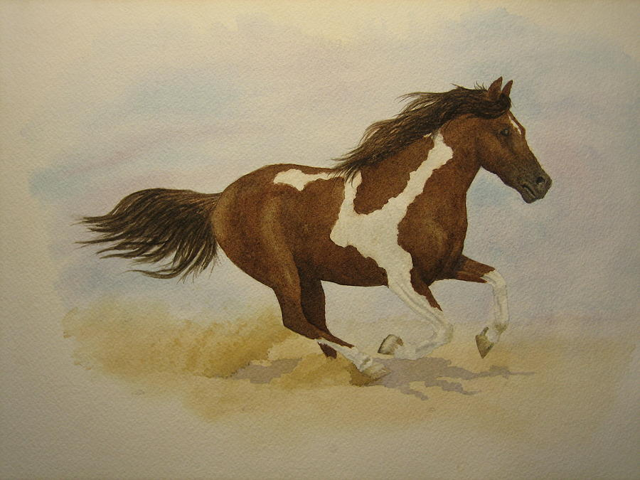 Paint Horse Painting - Running Paint by Jeff Lucas