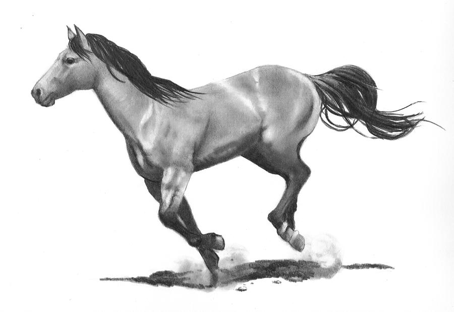 Horse Drawing - Running Stallion by Joyce Geleynse