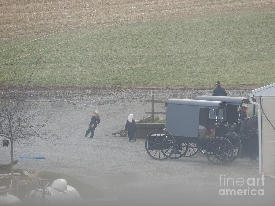 Amish Photograph - Running To The Buggy by Christine Clark