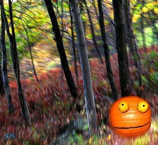 Rupert Pumpkin Photograph - Rupert Pumpkin Spotted In Millrift Pa by Steven Polatnick