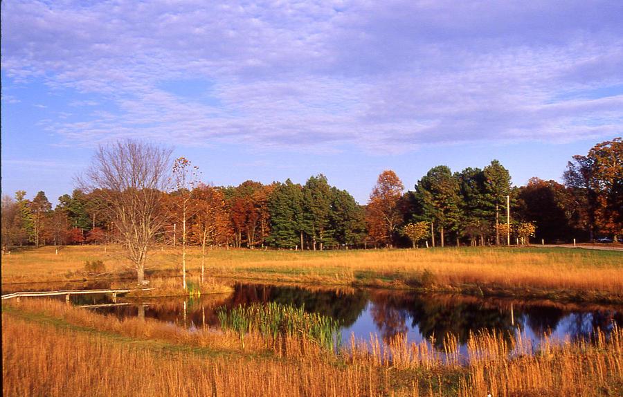 Pond Photograph - Rural Pond - 1 by Randy Muir