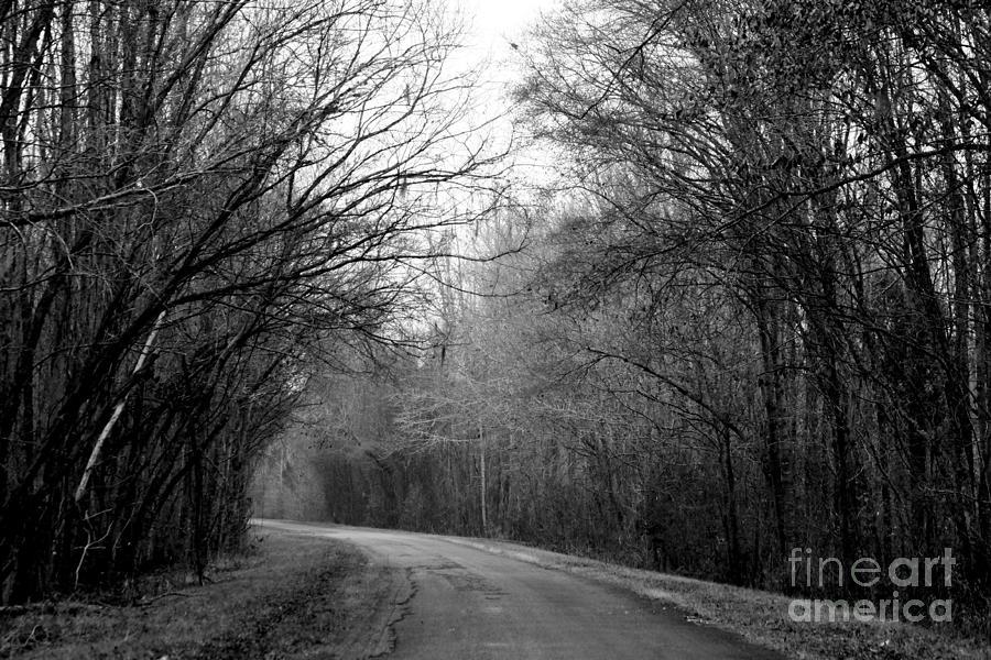 Rural Road Photograph