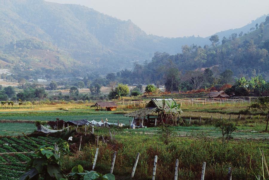 Agriculture Photograph - Rural Scene Near Chiang Mai, Thailand by Bilderbuch