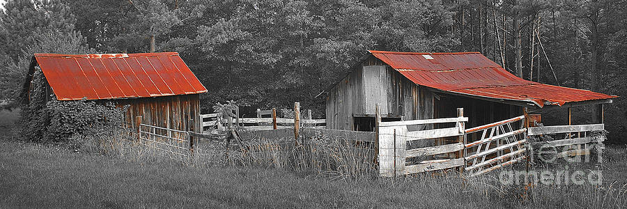Rural Serenity Black And White Version Red Roof Barn
