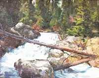 Colorado Painting - Rushing River by Ed  Slack