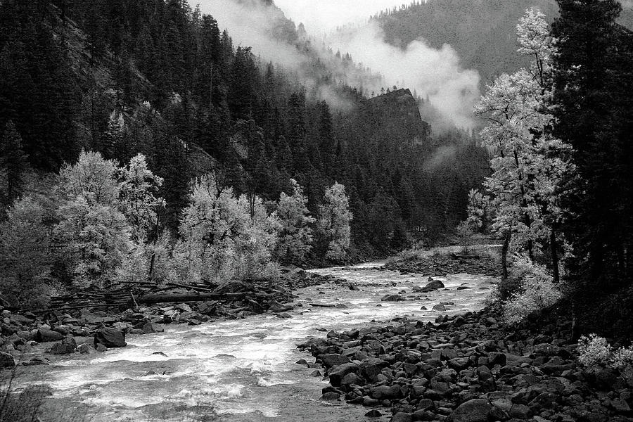 Rushing River by Jenny Mead