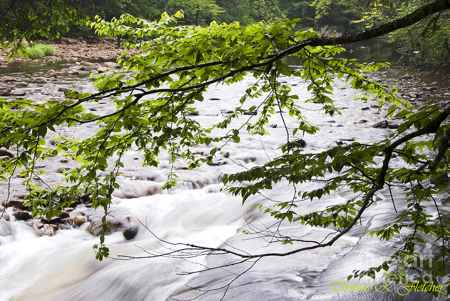 West Virginia Photograph - Rushing River by Thomas R Fletcher