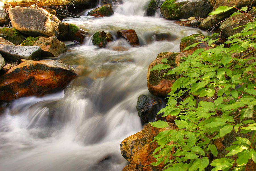 Rushing Water 3 Photograph by Douglas Pulsipher