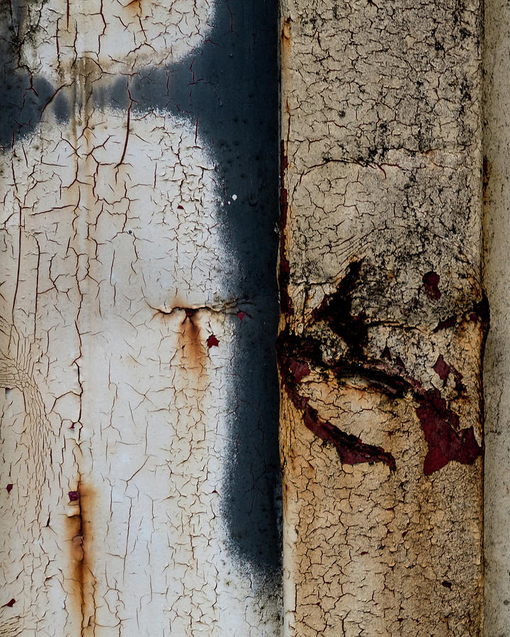 Rust 9638 by Pamela S Eaton-Ford