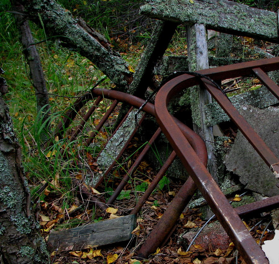 Jackfish Photograph - Rusted Bed Frame At Jackfish Ontario by Laura Wergin Comeau