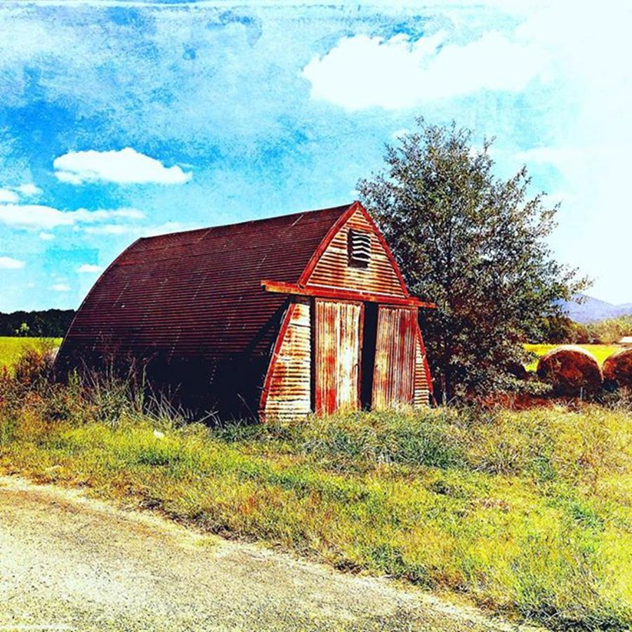 Shed Photograph - Rusted Shed, Lazy Afternoon by Steven Gordon