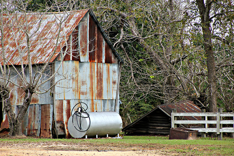 Old Barn Photograph - Rusted Tin Shed In Burnt Corn by Lynn Jordan