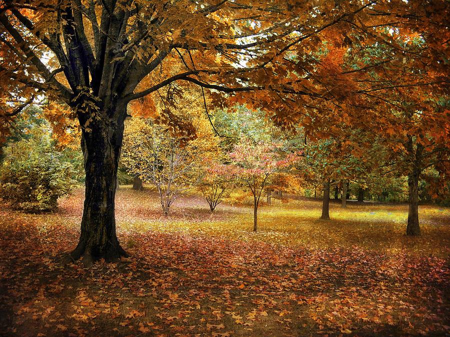 Autumn Photograph - Rustic Autumn  by Jessica Jenney