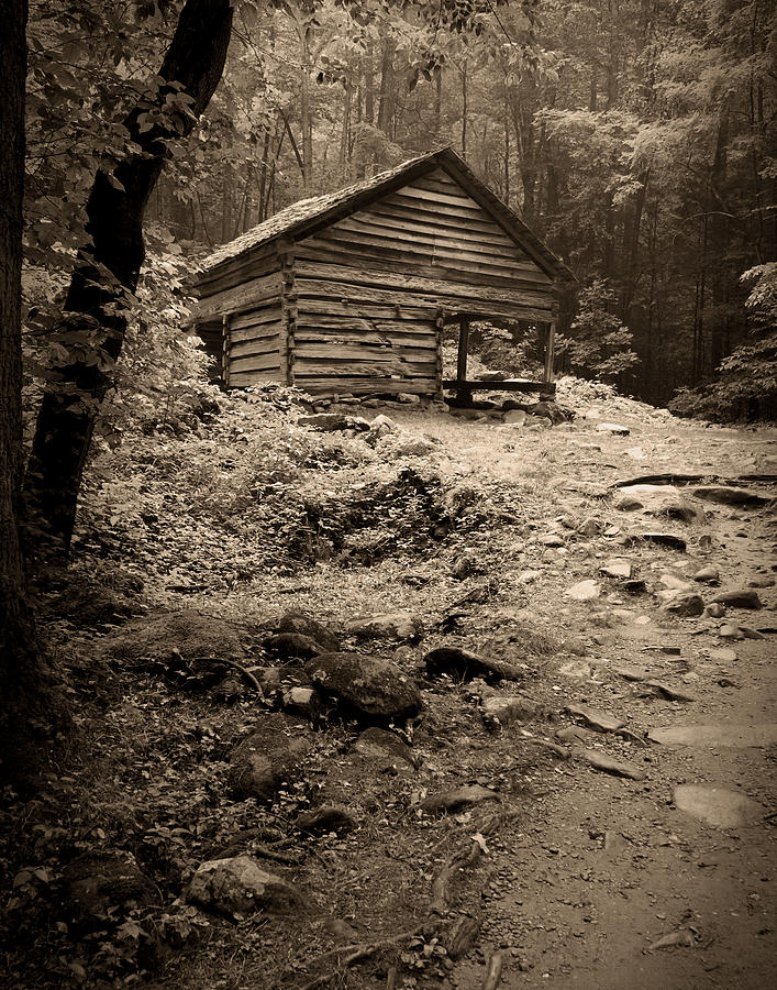 Rustic Cabin by Larry Bohlin