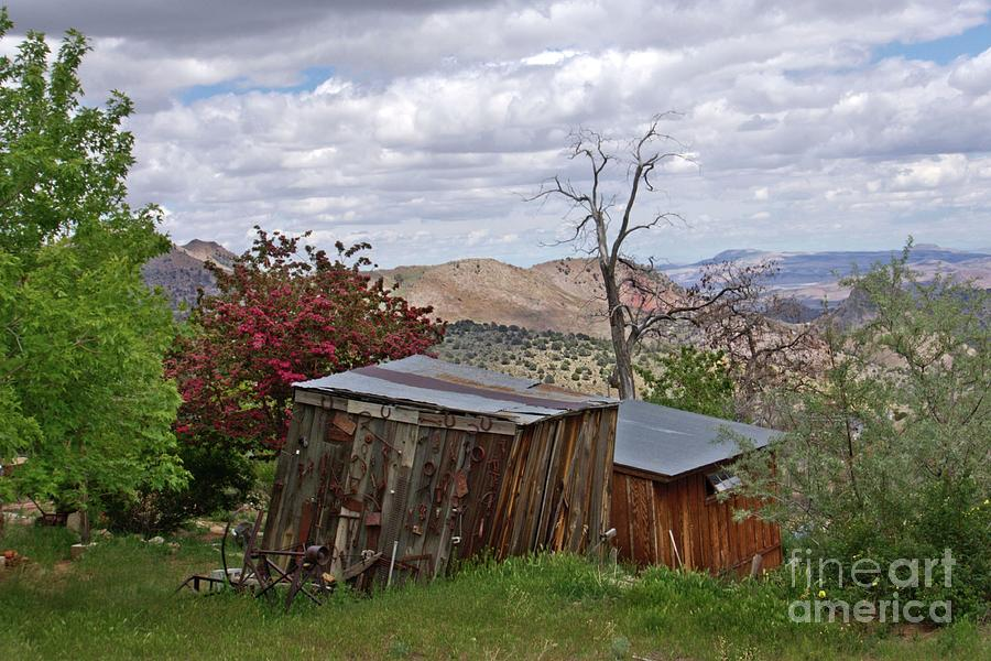 Rustic Cabins on a Hillside by Patricia Strand