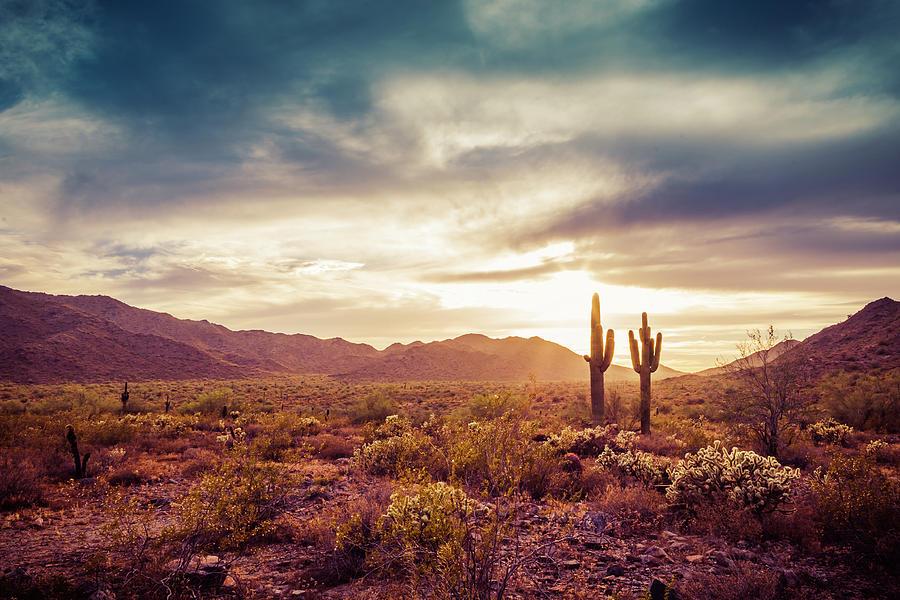 Rustic Desert by Ken Mickel