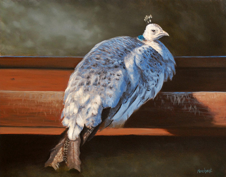 Oil Painting - Rustic Elegance - White Peahen by Linda Merchant