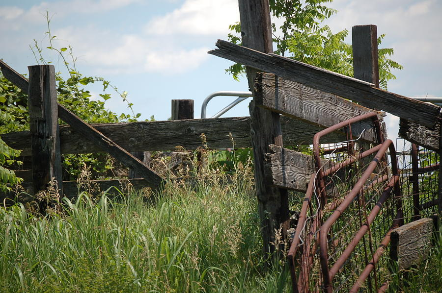 Rustic Fence Photograph by Christopher Butler