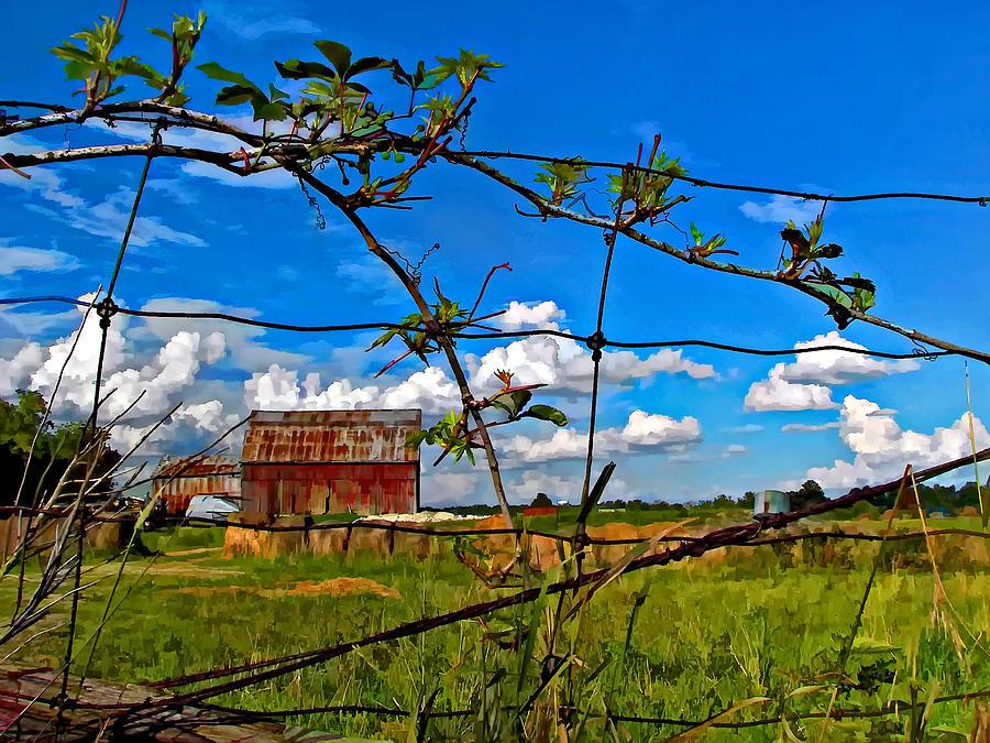 Fence Photograph - Rustic Frame Paint by Steve Harrington