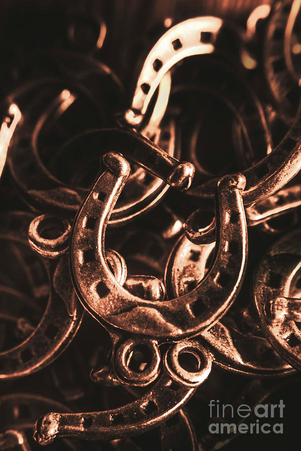 Horse Photograph - Rustic Horse Shoes by Jorgo Photography - Wall Art Gallery