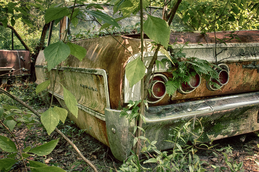 Antique Photograph - Rustic Rear by Travis Rogers