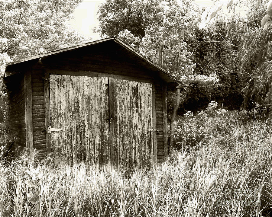 Shed Photograph - Rustic Shed by Perry Webster