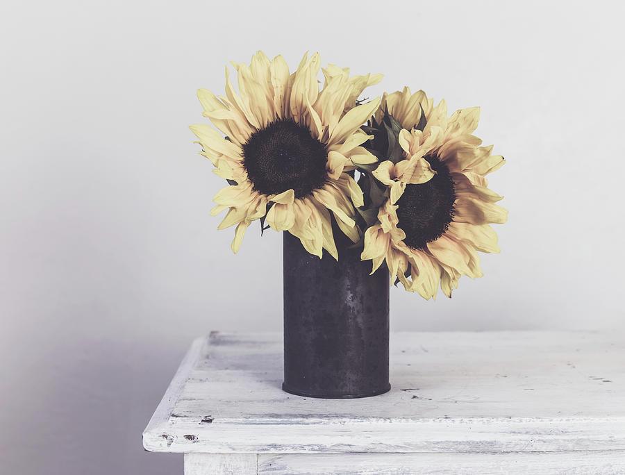 Rustic Sunflowers Photograph By Kim Hojnacki