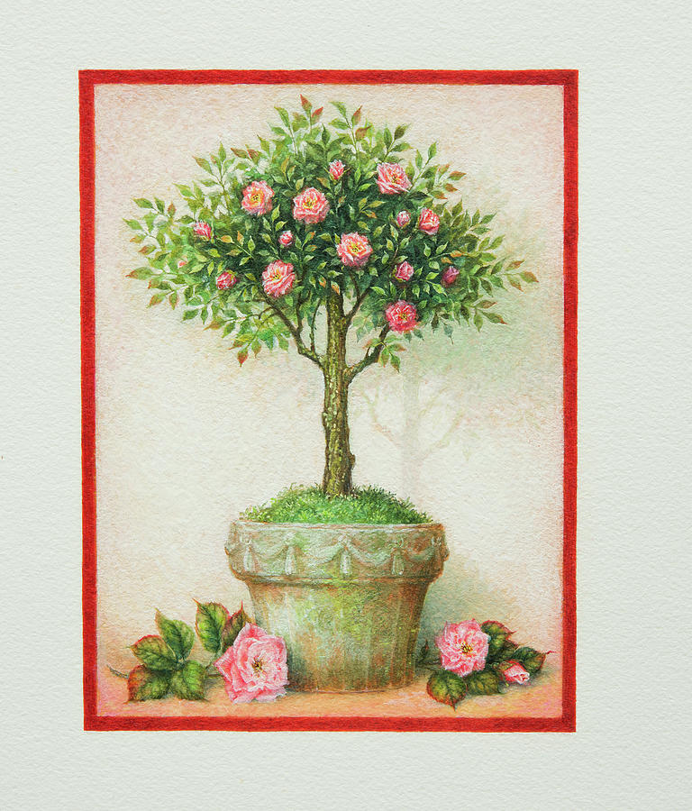 Rustic Topiary by Lynn Bywaters