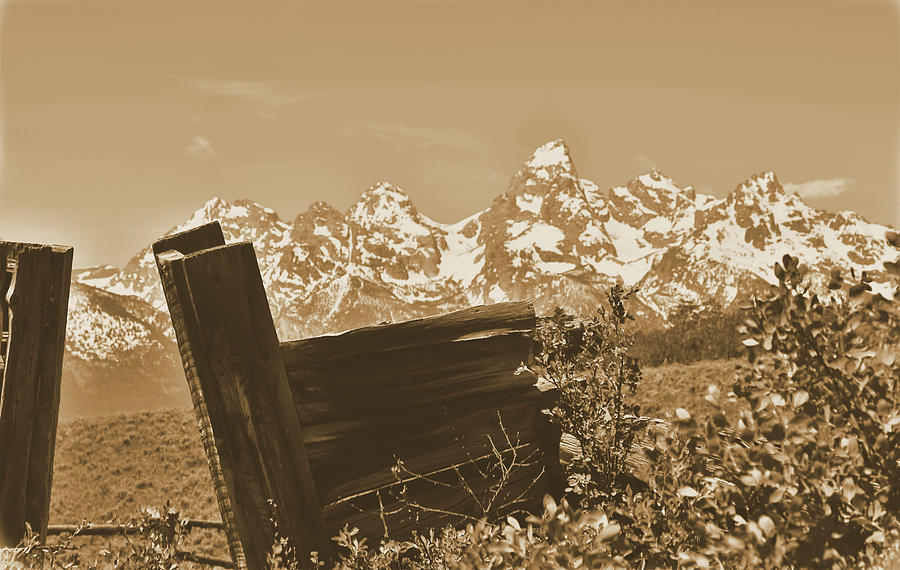Rustic Photograph - Rustic View Of Grand Teton by Dan Sproul
