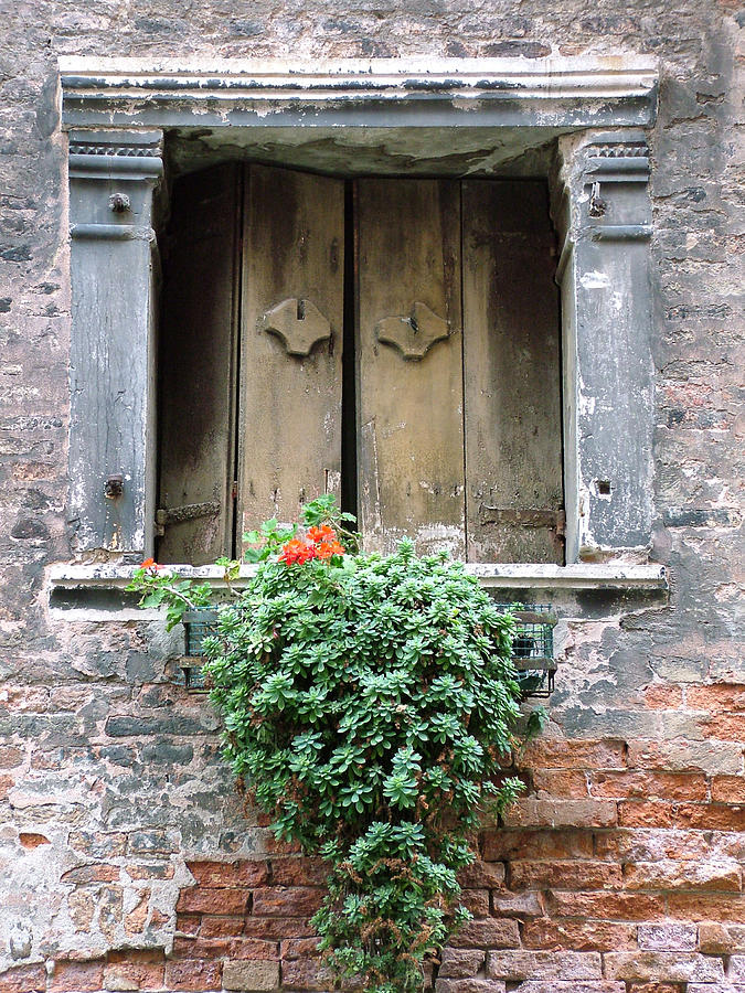 Venice Photograph - Rustic Wooden Window Shutters by Donna Corless