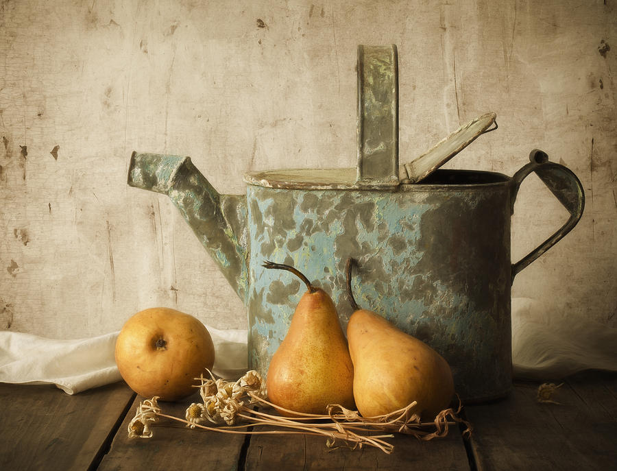 Pear Photograph - Rustica by Amy Weiss