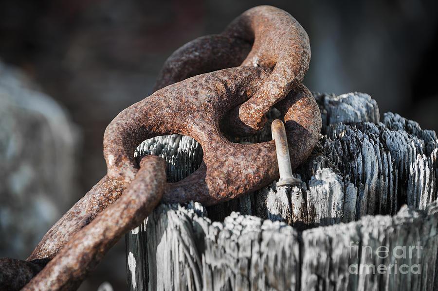Metal Photograph - Rusty Iron Chain Railing Fragment by Elena Elisseeva