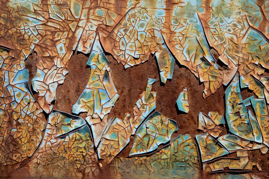Rusty Pieces by Karol Livote
