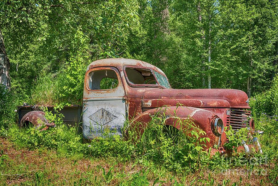 Dead Photograph - Rusty Truck by Paul Quinn