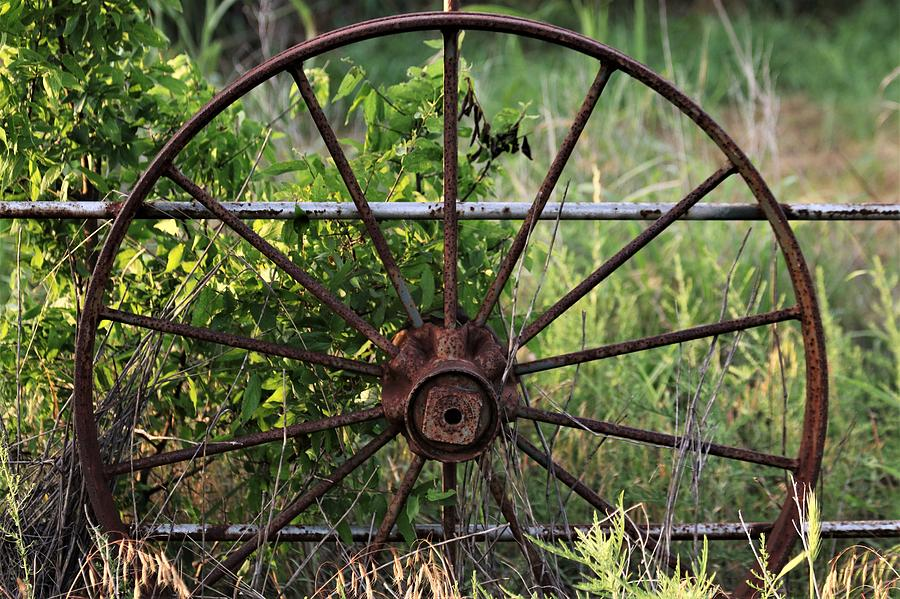 Rusty Wagon Wheel on Fence by Sheila Brown