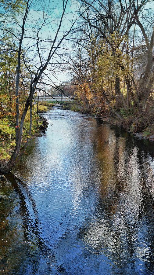 River Raisin Photograph