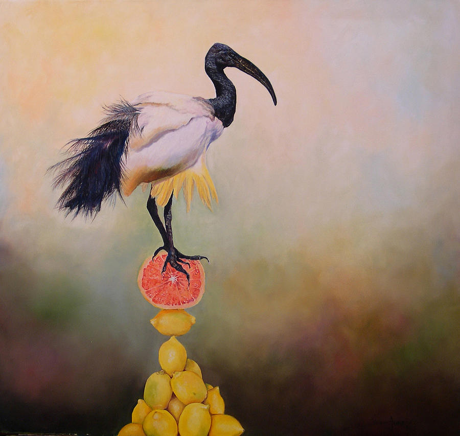 Bird Painting - Sacred Ibis Lemon Pyramid by Valerie Aune