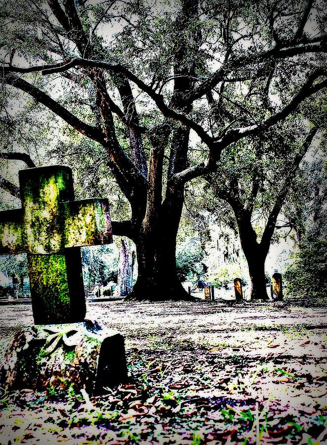 Tree Photograph - Sacred Rest by Jill Tennison