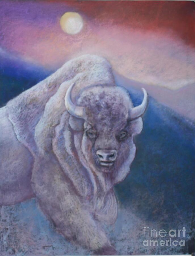 sacred white buffalo by Pamela Mccabe