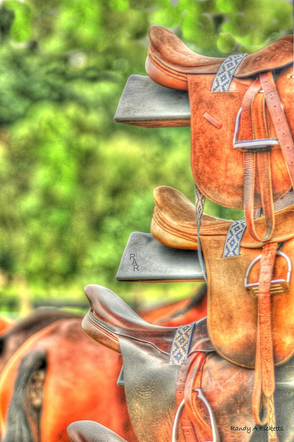 Horse Photograph - Saddle Up by Randy Ricketts