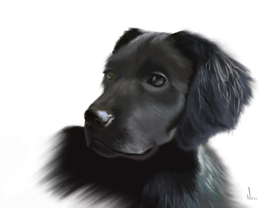 Dog Painting - Sadie by Greg Neal