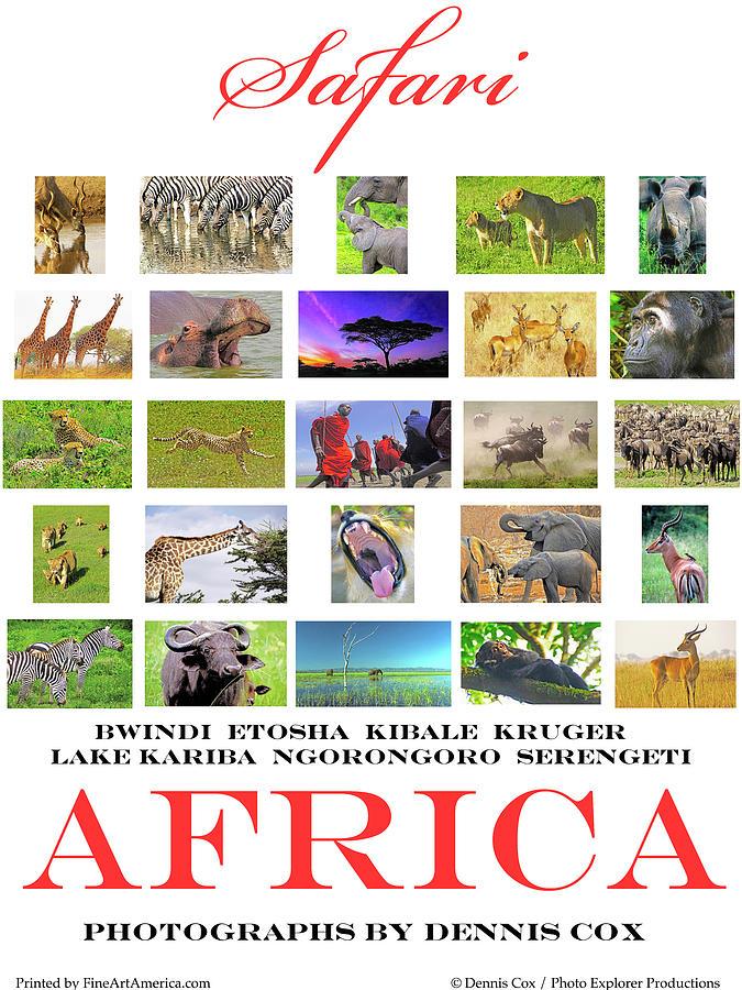 Safari Africa Poster Photograph