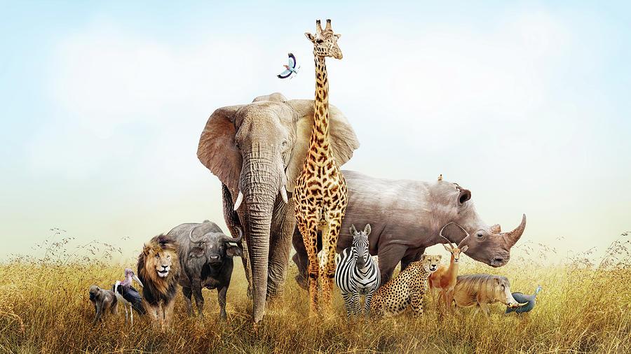 Animal Photograph - Safari Animals In Africa Composite by Susan Schmitz