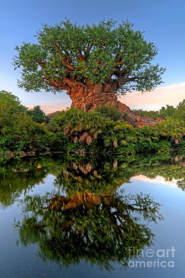 Safari Village Tree Of Life by Gary Keesler