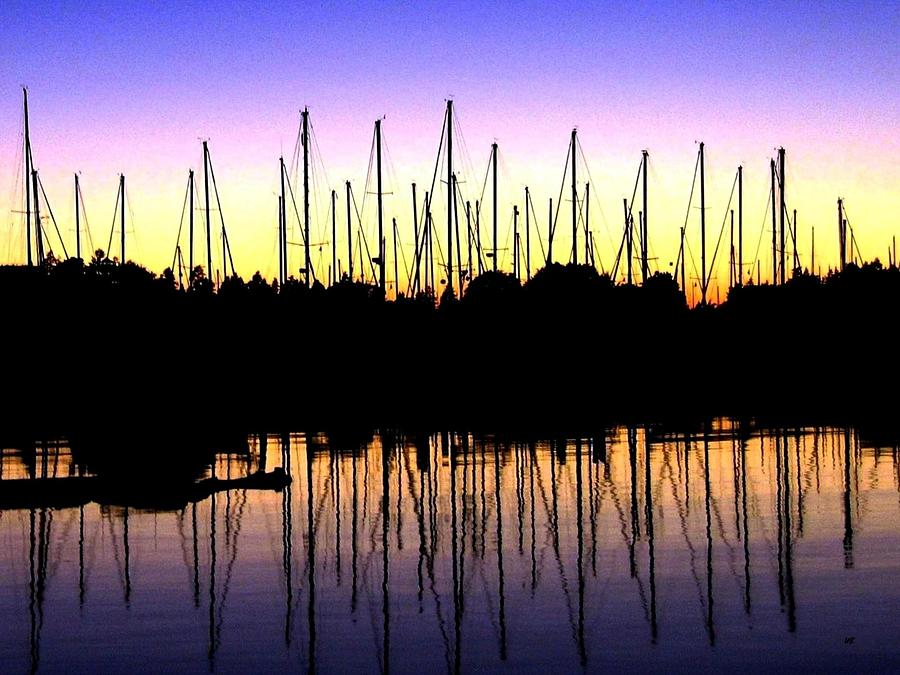 Sailboats Photograph - Safe Haven by Will Borden
