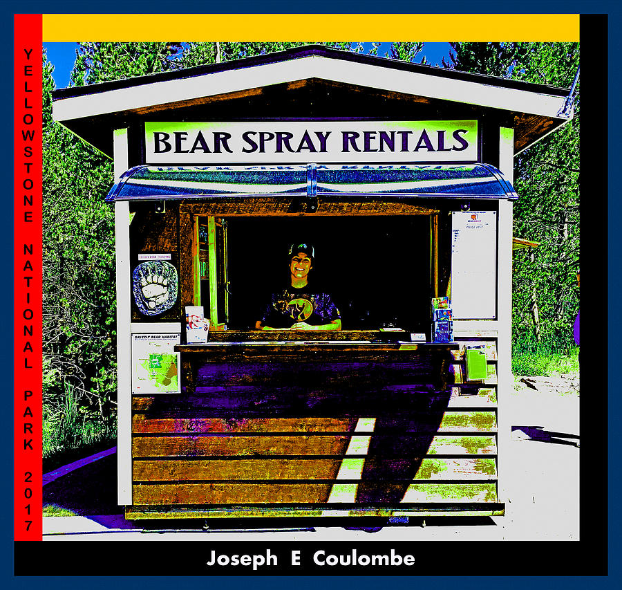 Safety 4 A Price by Joseph Coulombe
